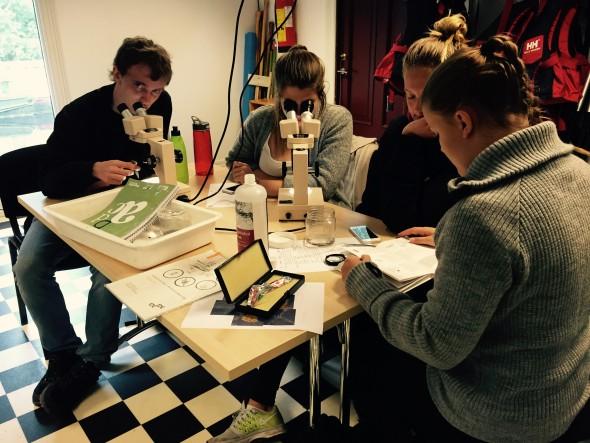 Ivrige elever fra Askim Videregående, Foto: Desiree Nævdal